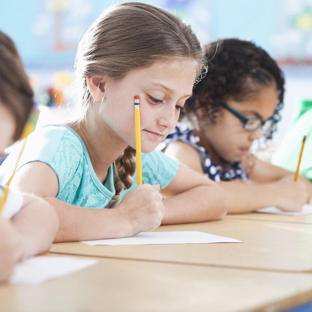 11+ CEM Maths NVR Assessment Junior Maths NVR Literacy Club